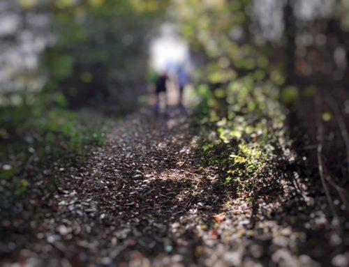 Running, Fotografia e Vita